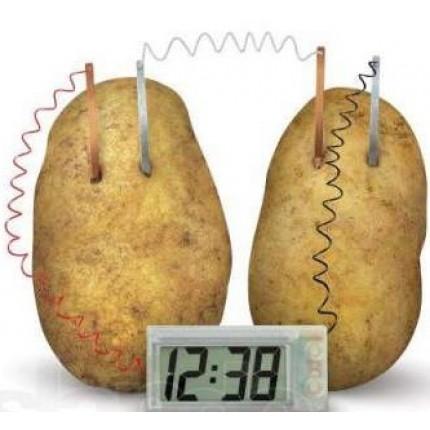Часы в картошке