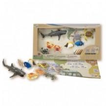 Обучающий игровой набор с QR-картой - ОБИТАТЕЛИ ИНДИЙСКОГО ОКЕАНА от Wenno  - под заказ